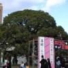 京都大学学祭 NF